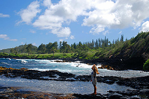 maui_3_sea_skinmite