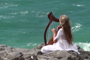 megan_harp2_skinmite